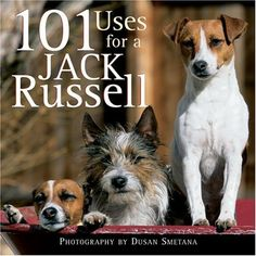 101 Uses for a Jack Russell by Willow Creek Press