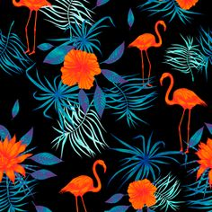 Search Patternbank for thousands of royalty-free stock seamless repeat patterns, vectors, trend forecasting and more. Buy exclusive or non-exclusive licenses Flamingo Pattern, Good Night Image, Repeating Patterns, Black Backgrounds, Print Patterns, Exotic, How To Draw Hands, Royalty, Birds