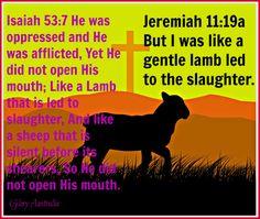 Jesus Christ is the Lamb of God