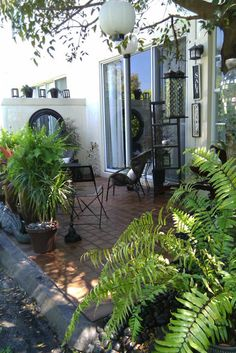 FL PATIO - eclectic - patio - miami - by FOCAL POINT STYLING