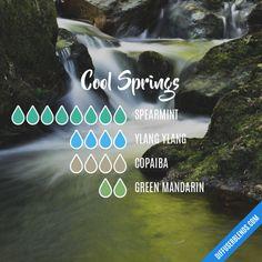 Cool Springs - Essential Oil Diffuser Blend