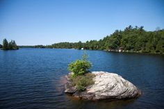 Mini island in Otter Lake, just south of Parry Sound. a spring fed pristine and great swimming body of water Swimming Body, Stuff To Do, Things To Do, Otters, Landscape Photos, Something To Do, Islands, Tourism, Wildlife