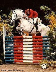 Abdullah and Conrad Homfeld Abdullah *Pg*E* 1970-2000 Trakehner stallion (Donauwind *E* x Abiza *E*, Mahardscha) Gold and Individual Silver 1984 Olympics.