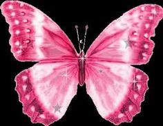 Welcome to butterfly animated gifs ! You will love these Butterfly pictures, Butterflies are a popular motif in the visual and . Butterfly Clip Art, Butterfly Pictures, Butterfly Wallpaper, Pink Butterfly, Monarch Butterfly, Pink Love, Pretty In Pink, Papillon Rose, Dishcloth Knitting Patterns