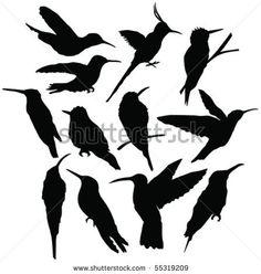 stock vector : flying hummingbird silhouettes - vector