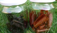 Ovocná koža. Zdravá a chutná (RECEPT) - LepšíDeň.sk Homemade Jelly, Home Canning, Pickles, Cucumber, Mason Jars, Med, Hana, Homemade Jello, Canning