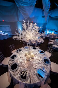 White, Silver & Blue Winter Wonderland Wedding at A La Carte Pavilion - Tampa Wedding Photographer Andy Martin Photography (26)