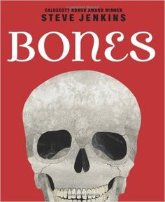 Bones: Skeletons and How They Work: Steve Jenkins: 9780545046510: Amazon.com: Books