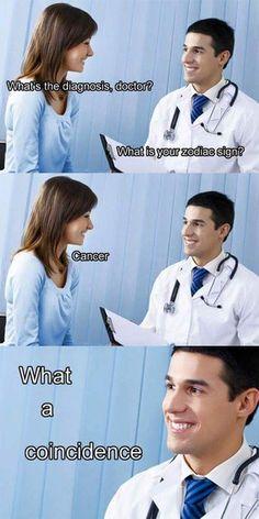 I laughed way, way too hard.