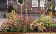 Front Garden Landscape, Landscape Design, Garden Design, Landscaping Retaining Walls, Landscaping Plants, Side Garden, Lawn And Garden, Pyrus, Garden Borders