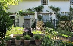 Roses and Rust: Sublime Stellenberg
