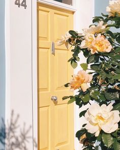Yellow doors are so welcoming to a happy home! What's you favorite door color? Yellow doors are so welcoming to a happy home! What's you favorite door color? Yellow Aesthetic Pastel, Aesthetic Colors, Flower Aesthetic, Aesthetic Collage, Aesthetic Pictures, Peach Aesthetic, Aesthetic Style, Aesthetic People, Nature Aesthetic