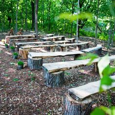My camping area - bonfire area. Easy solution to seating problem....Rustic wooden benches for outdoor  seating... outdoor seating, wooden benches, seating arrangements, tree stumps, hay bales, forest wedding, wedding seating, outdoor weddings, ceremony seating