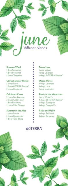 Beautiful blends for the summer! Here are 8 diffuser blends to try out this month. www.petalandstem.com