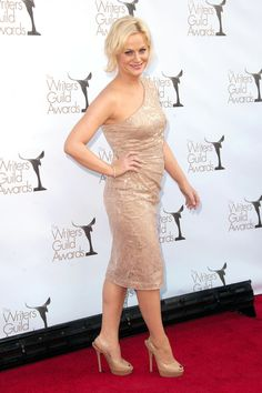 Amy Poehler Amy Poehler, Snl, Celebrity Pictures, Awards, Writer, Formal Dresses, Celebrities, Lady, Beauty