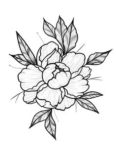 Ideas for flowers art drawing tattoo deviantart Flower Tattoo Drawings, Flower Tattoo Designs, Flower Tattoos, Art Drawings, Peony Drawing, Floral Drawing, Flower Art Drawing, Trendy Tattoos, Black Tattoos