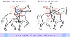 Happy Horse Training Infogram, how to sit on a horse.