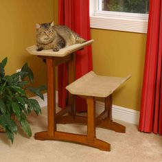 Mr. Herzher's Double Seat Feline Furniture (I think the brown goes better with the Lotus, right, 'cause it doesn't look like a failed match like the black + espresso) $229.99