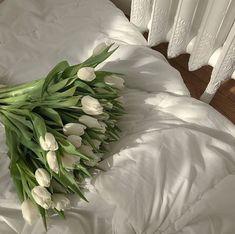 Mint Green Aesthetic, Aesthetic Colors, Beige Aesthetic, Flower Aesthetic, Aesthetic Pictures, Green Theme, Pretty Flowers, Tulips Flowers, Fresh Flowers