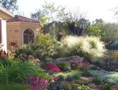 Profusion of drought tolerant perennials and grasses xeriscape design
