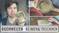 Brombeerblätter essen, aber wie? Mein Tipp gegen Heißhunger! - YouTube