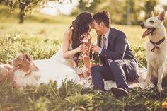 шебби шик свадьба #wedding #summer