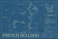 Rendered in the original format of a working blueprint, this unique wall art features the French Bulldog drawn in detail along with factual information that makes that breed special. This unique blueprint is the perfect wall art or gift for French Bulldog lovers and owners. Museum quality print in archival acid free matte board. All framing is 100% poplar wood ...