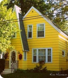 Yellow Cottage, Cozy Cottage, Green Shutters, Jaune Orange, Yellow Houses, Truro, Mellow Yellow, Color Yellow, Big Yellow