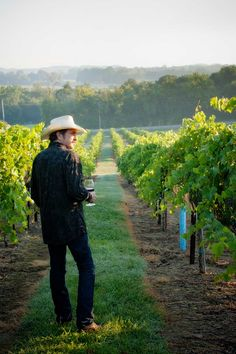 Arrington Vineyards- south Nashville- great day trip- take a blanket and picnic, order some wine (don't expect Napa grade)... Sit back and enjoy the sweet life