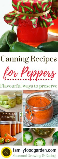 Canning recipes for preserving peppers