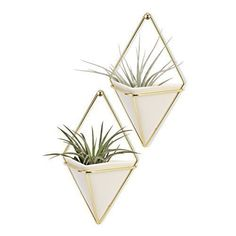 Wall Mounted Plant Holder Metal Framed Ceramic White Pots Ideal For Indoor Decor