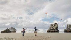 Image result for oregon coastline
