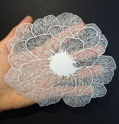 http://bravebirdpaperart.com/florals-1/
