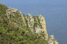 Route: North Somerset, Steep Holm