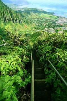 Haiku Stairs - Stairway to heaven, Oahu, Hawaii....maybe for our next trip back to Hawaii we'll try Oahu!! Amazingly beautiful!!!