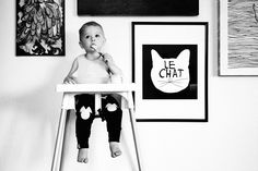 Le Chat Kitty Cat