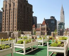 Edible Rooftop Garden at the Waldorf Astoria and have a spa treatment at the Guerlain Spa at your peaceful stay. What a treat! Wish List!