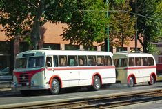 ifa-bus.jpg (1024×689)