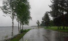 Sade  Rain