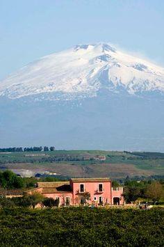 ETNA, active volcano and wine http://blog.bradswine.com/discover-wine-regions-etna-sicily/