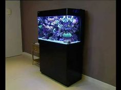 Zoutwater aquarium video over de Red Sea max 250 ultimate alles in één, Plug & Play koraalrif aquarium systeem.