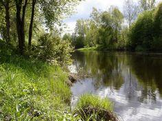 """Keväinen jokiranta. ©Esa Rönkä: """"Kevätretkellä maakunnassa Lapualla pidettiin taukoa ja kirkas ilma houkutti kuvaamaan jokirannassa."""""""
