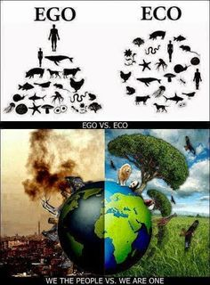 Ego v Eco. Please join our Eco leaders Facebook Group by clicking on here