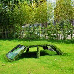 Quand deux voitures se retrouvent ensevelies sous herbe !