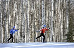 Winter Recreation in Fairbanks – Princess Lodges Dark Winter, Winter Fun, Winter Time, Fort Wainwright, Nordic Skiing, Fairbanks Alaska, Great North, Living In Alaska, Cross Country Skiing