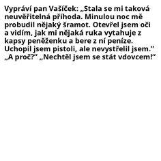 Vypráví pan Vašíček: Stala se...
