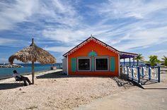 #Scuba Diving - Scuba diving clubhouse