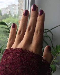 Elisaveta ⚜ (@prmvr_83) в Instagram: «#nails #burgundy #lace