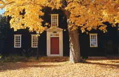 Lost in America + Leaves Changing + Red Door