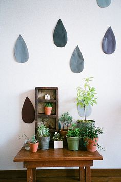 plants | my little green planet | Sayaka Minemura via Flickr